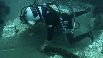 Подводного бетон септики бетону